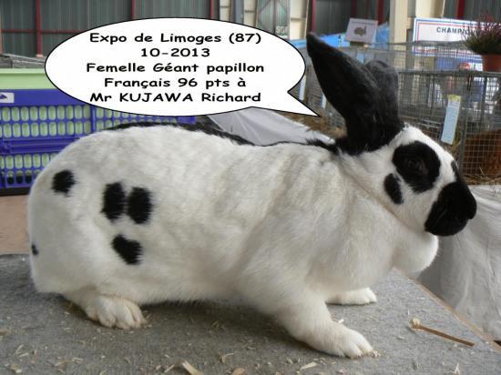 expo-limoges-fgpf-kr-10-2013.jpg